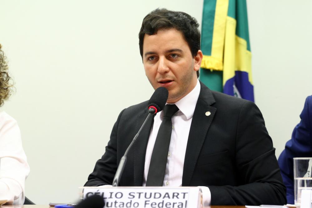 Célio Studart propõe que parte da verba do fundo nacional venha de multas aplicadas aos que praticam maus-tratos contra animais