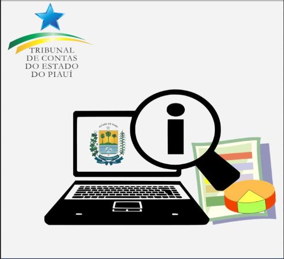_Capa do relatório sobre o Portal da Transparência do Piauí