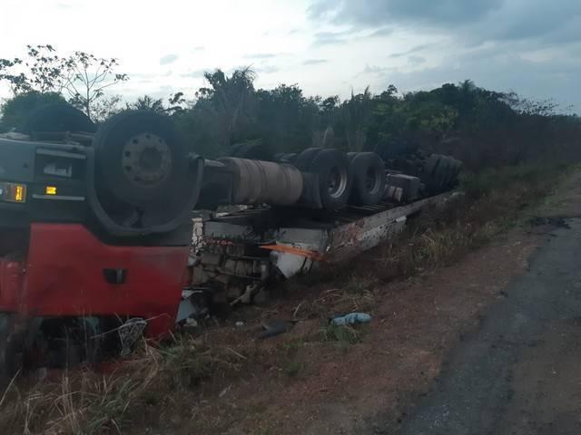 Sete animais morrem atropelados e caminhão tomba na BR-135, no MA 2