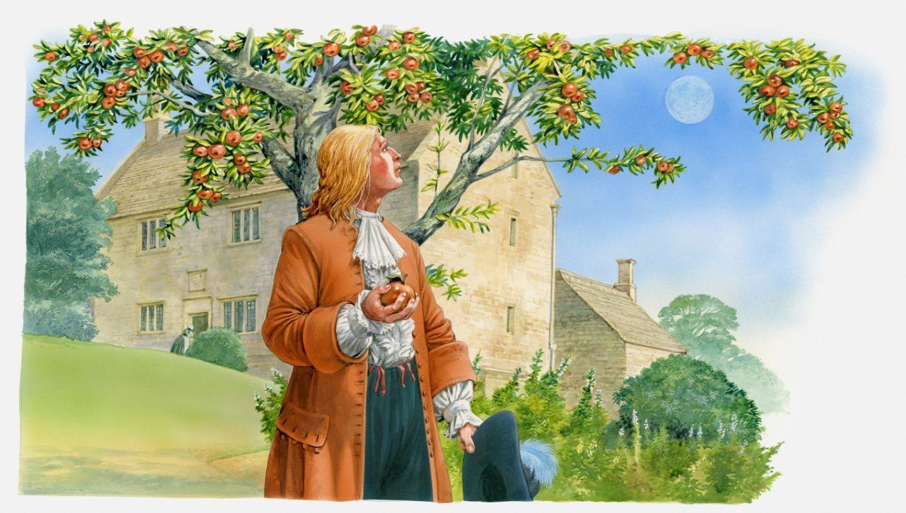 Ilustração de Isaac Newton segurando a maçã na mão e olhando para a árvore. (Foto: Getty Images)