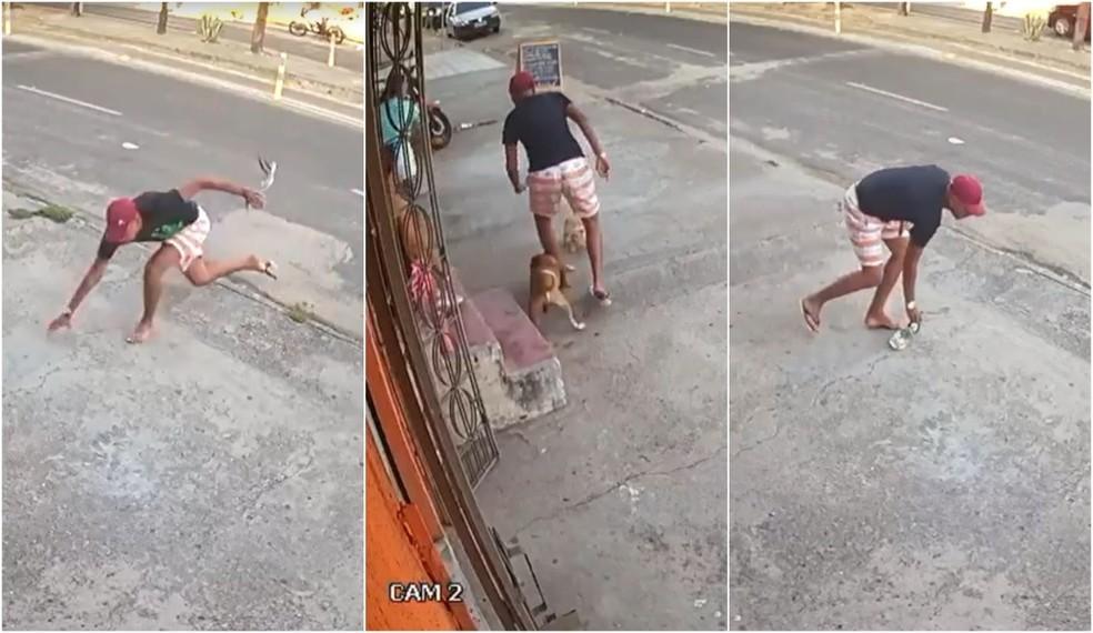 Além de tropeçar e perder o chinelo, o criminoso teve a canela mordida por um cachorro