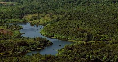 Thumb desmatamento amazonia