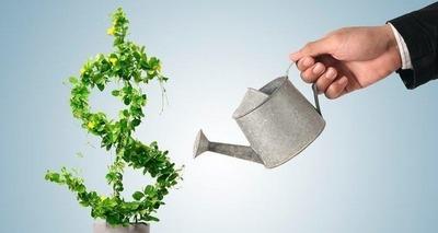 Thumb dinheiro em rvore