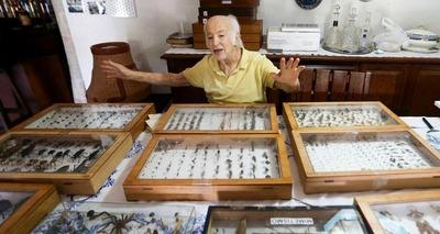 Thumb colecionador insetos