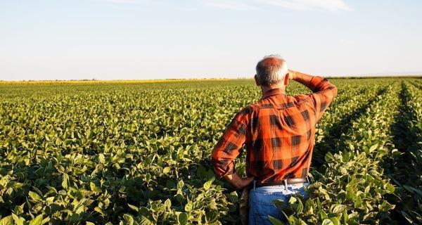 Medium produtor rural