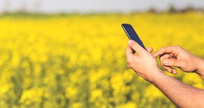 Thumb man field smartphone yellow