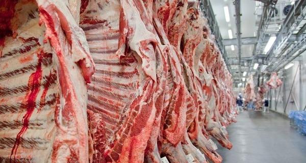 Medium carne2
