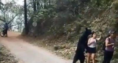 Thumb screenshot 2020 07 20 v deo em que mulher arrisca selfie durante encontro perigoso com urso selvagem surpreende as redes so ...