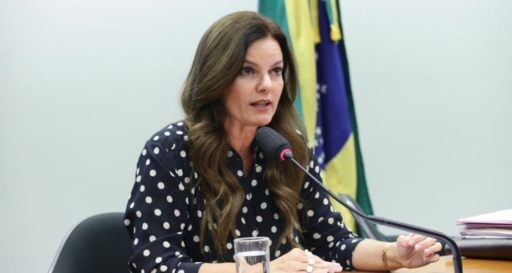 _Iracema Portela, do PP, seguiu orientação do partido (Foto: Agência Câmara)