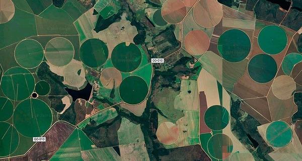 Medium plantacao de satelite 001