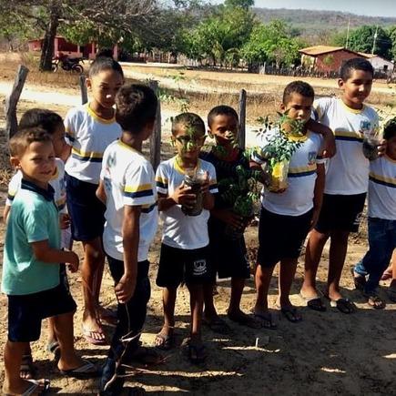 Medium dia da  rvore amarante amarante escolas img 20180922 wa0018
