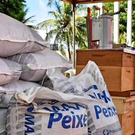 Medium 22860 entrega sementes equipamentos apicultura 290519 foto mauricioalexandre4